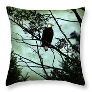 Perched Raptor  Throw Pillow