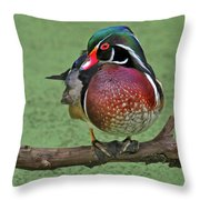 Perched Wood Duck Throw Pillow