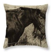Percheron Prairie Horses Throw Pillow