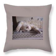 Percy Cat Sleep Stylist Throw Pillow