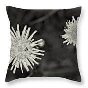 Perennial Sow-thistle Monochrome Throw Pillow