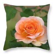 Perfect Peach Petals Throw Pillow