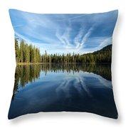 Perfect Reflection Throw Pillow