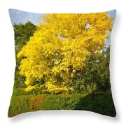 Perfect Summers Day Throw Pillow