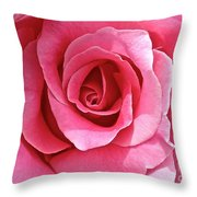 Perfectly Bewitched Throw Pillow