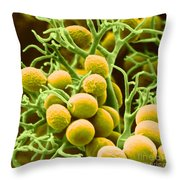 Peronospora Parasitica Throw Pillow