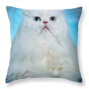 Persian Beauty 1 Throw Pillow