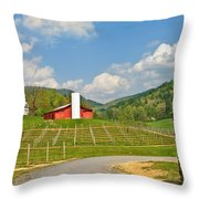 Persimmon Winery Throw Pillow