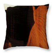 Person Standing Atop The Kings Canyon Throw Pillow
