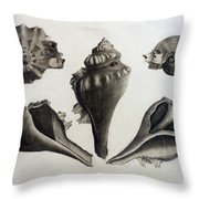 Perspectives Of A Shell Throw Pillow