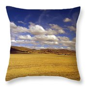 Peruvian High Plains 2 Throw Pillow