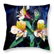 Peruvian Lily In My Garden Throw Pillow