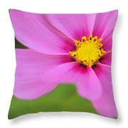 Petaline - P01a Throw Pillow
