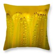Petals And Dew Drops Throw Pillow