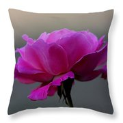 Petals And More Throw Pillow
