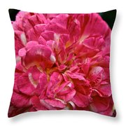 Petals Petals And More Petals Throw Pillow