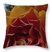 Petel Patterns Throw Pillow