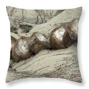 Petrified Forest 1 Throw Pillow