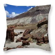 Petrified Forest 2 Throw Pillow