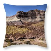 Petrified Forest Badlands Throw Pillow