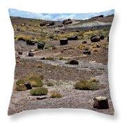 Petrified Forest National Park 2 Throw Pillow