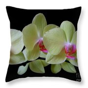 Phalaenopsis Fuller's Sunset Orchid No 1 Throw Pillow