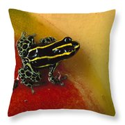 Phantasmal Poison Dart Frog Throw Pillow