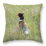 Pheasant In The Grass Throw Pillow