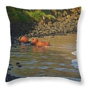 Phillip Island 2 Throw Pillow