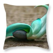 Phillipine Jade-vine Flower Throw Pillow