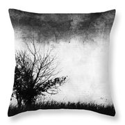 Phillips Few Throw Pillow