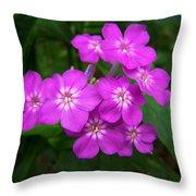 Phlox In Bloom Throw Pillow