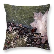 Photo Watercolour Leaf Against Rock Throw Pillow