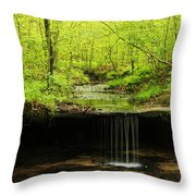 Pickle Spring In Missouri Throw Pillow