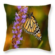 Picky Monarch Throw Pillow