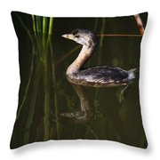 Pied-billed Grebe In The Reeds Throw Pillow