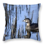 Pied-billed Grebe, Montreal Botanical Throw Pillow