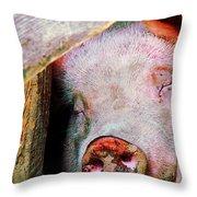 Pig Sleeping Throw Pillow