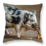 Pig With An Attitude Throw Pillow