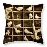 Pigeon Holed Throw Pillow