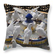 Pigeons Of Maria Luisa Parque Throw Pillow