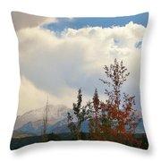 Pikes Peak View Throw Pillow