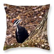 Pileated Woodpecker 3 Throw Pillow