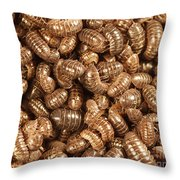 Pill Bugs Throw Pillow