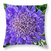 Pin Cushin Throw Pillow