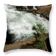 Pine And Falls Glen Alpine Falls Throw Pillow