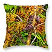 Pine Cones And Needles On A Branch Throw Pillow