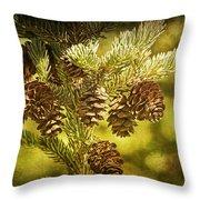 Pine Cones No.056 Throw Pillow