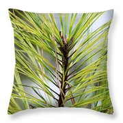 Pine Leader Throw Pillow