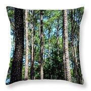 Pine Patch Throw Pillow